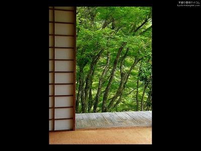 高山寺09【ダウンロードする場合は右の画像サイズをクリックしてください】