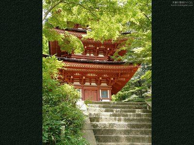 浄瑠璃寺25【ダウンロードする場合は右の画像サイズをクリックしてください】