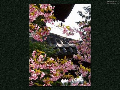 清凉寺10【ダウンロードする場合は右の画像サイズをクリックしてください】
