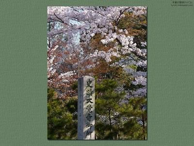 大覚寺08【ダウンロードする場合は右の画像サイズをクリックしてください】