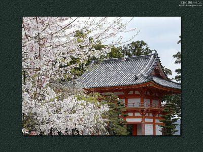 道成寺10【ダウンロードする場合は右の画像サイズをクリックしてください】