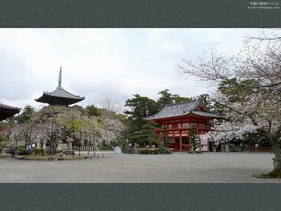 道成寺11【ダウンロードする場合は右の画像サイズをクリックしてください】