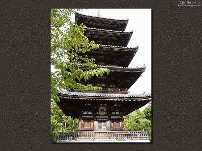 仁和寺29【ダウンロードする場合は右の画像サイズをクリックしてください】