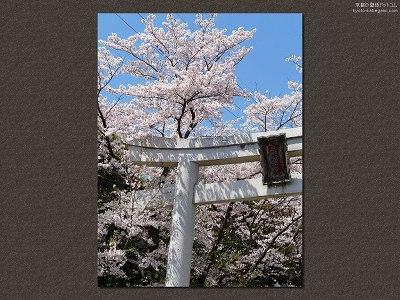 宗忠神社01【ダウンロードする場合は右の画像サイズをクリックしてください】